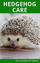 free hedgehog care book
