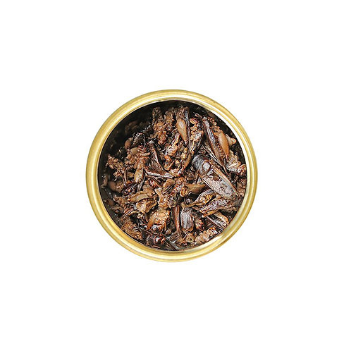 Crickets 2.4oz Large Can