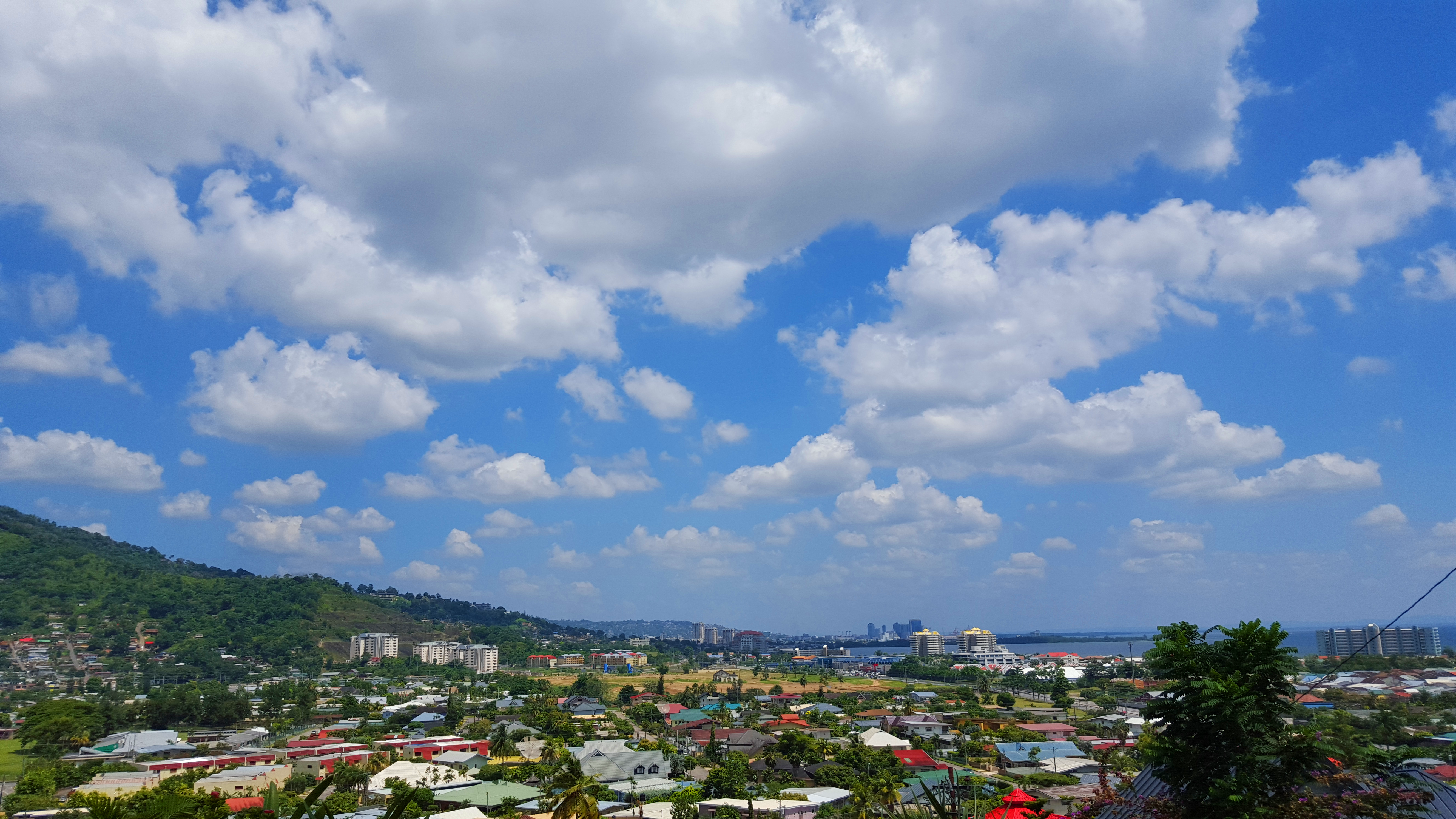 """A View of Port-of-Spain 3"""