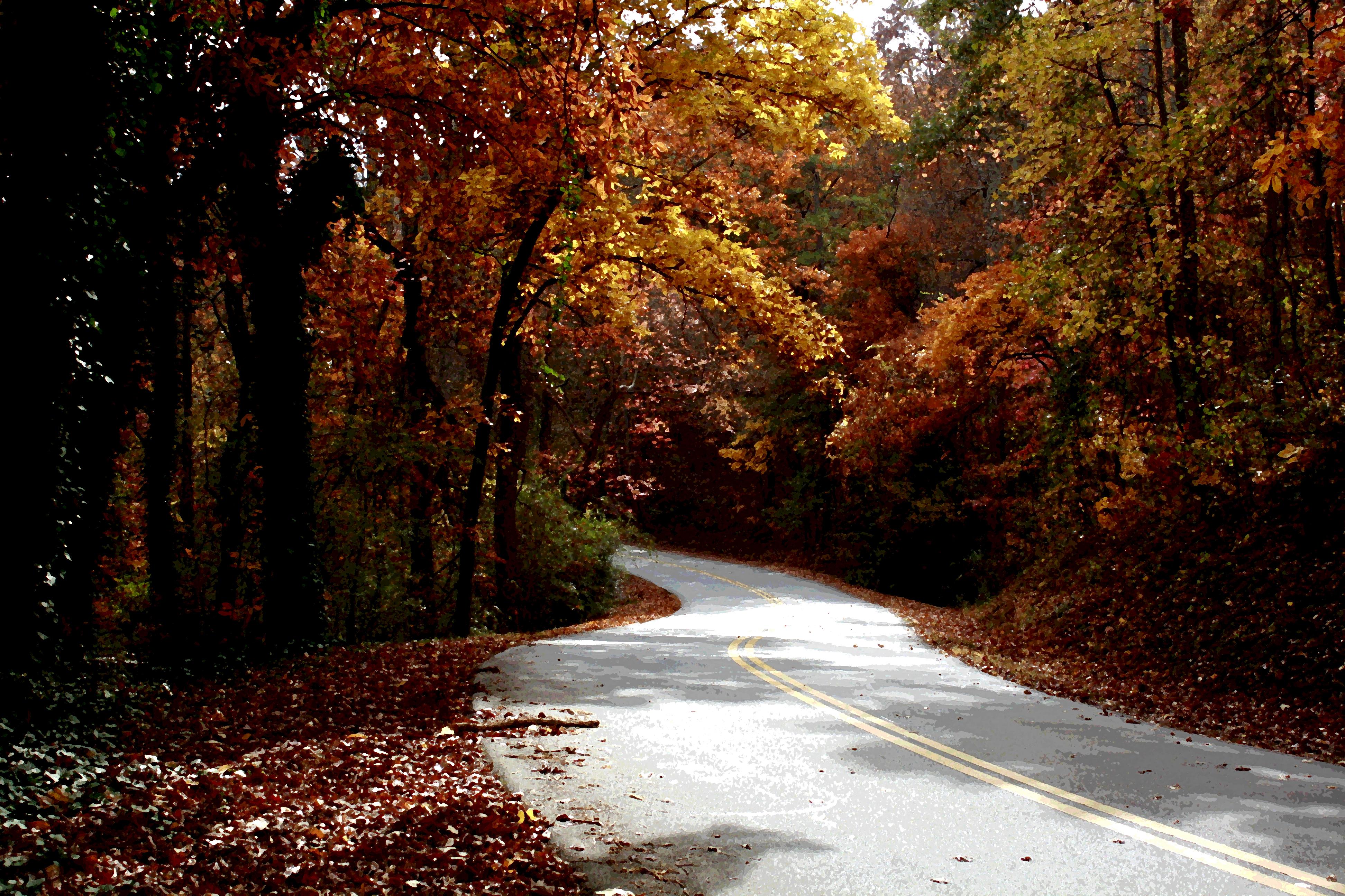Fall, Atlanta, GA