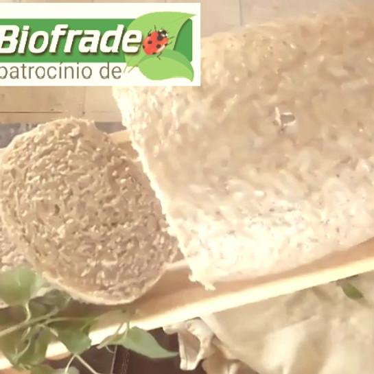 Pão integral  E  Pirosky massa de fermentação longa