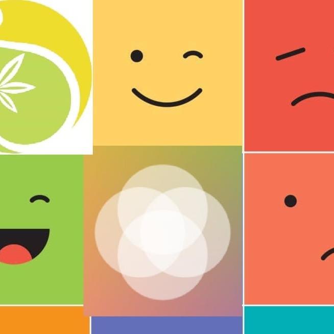 A Influência da Nossa Alimentação nas nossas Emoções
