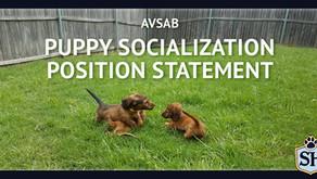 AVSAB Puppy Socialization Position Statement