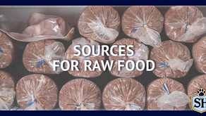 Sources for Raw Food