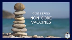 """Considering """"Non-Core"""" Vaccines"""