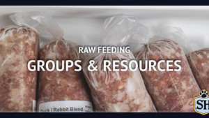Raw Feeding Groups & Resources