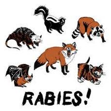 rabies (1).jpg