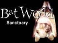 BWS-web-logo.jpg