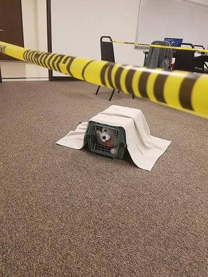 CSI Class 2.jpg