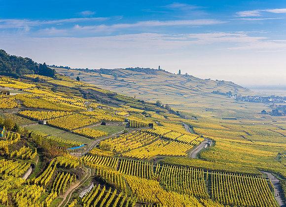 Vol Circuit Plaine et Route du vin