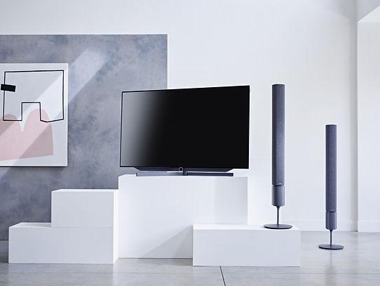 Loewe TV Bild 7
