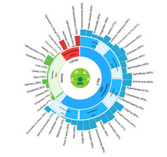 PATENT - Personality based Sentiment Analysis