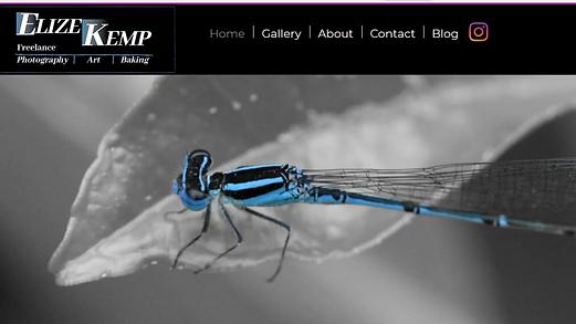Elize Kemp Website.png
