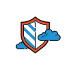 icons8-shield-100 (1).png