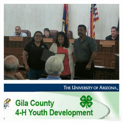 4-H Leaders Council