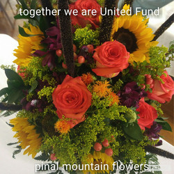 Pinal Mountain Flowers
