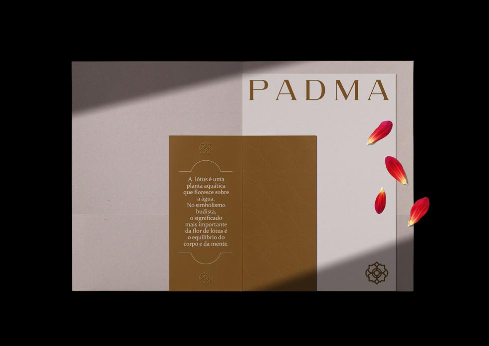 Diagrama_PadmaA4-11.jpg