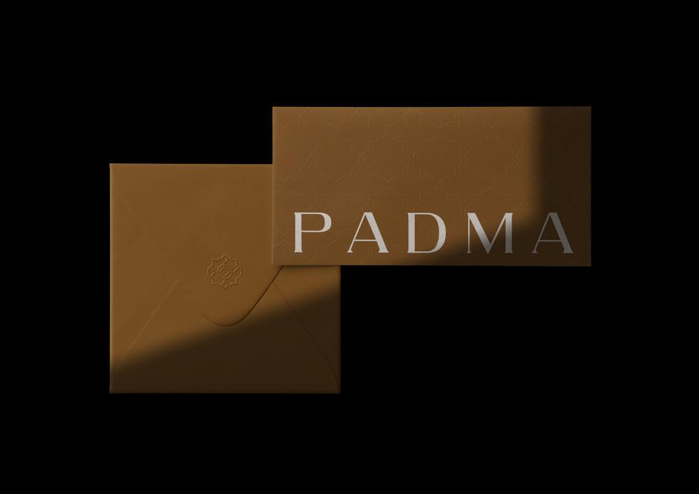 Diagrama_PadmaA4-10.jpg