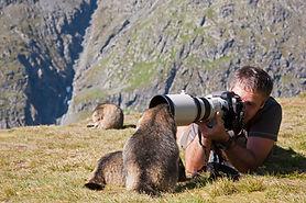 nature photographe