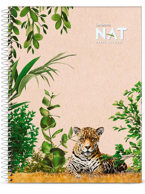 5 Cuadernos Ledesma Nat 22x29 cuadriculado