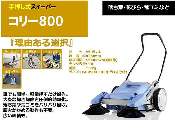 コリー800.jpg
