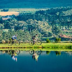 Mountain Biking Tours by GoBike Hermanus, Overberg, South Africa