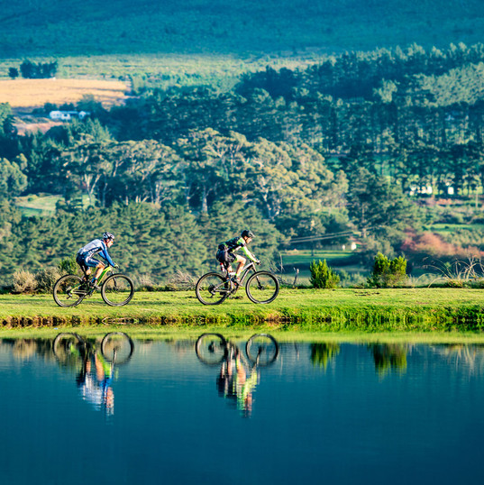 Mountain Biking Tours by GoBike Hermanus, Overberg, South Africa