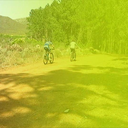 GoBike Hermanus, Mountain Bike Tours, South Africa