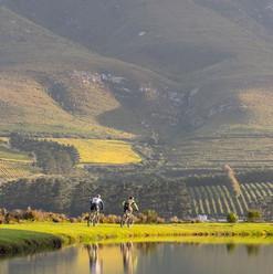 Explore the Overberg winelands on a mountain biking tour. Hermanus Tours
