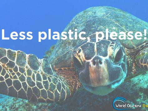 The Oceans Plastic Problem
