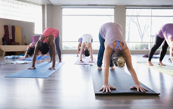 Yoga Class - Rivolta verso il basso Dog