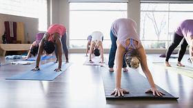 Frauen bei der Gymnastik. Foto: Wix.com