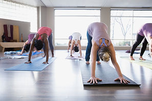 Yoga class where students are in the downward facing dog pose
