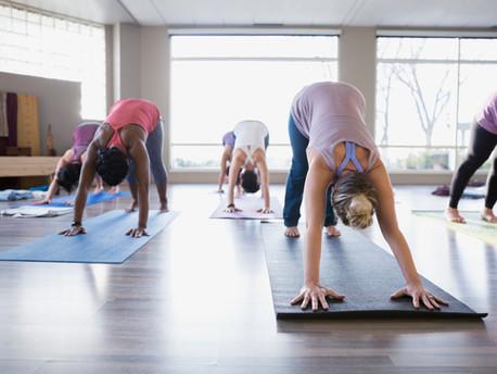 Mal was anderes...Yoga im Grassi Museum für Völkerkunde