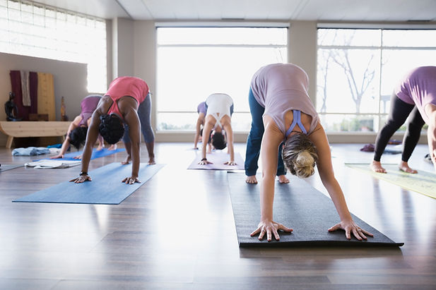 Cours de yoga - chien orienté vers le ba