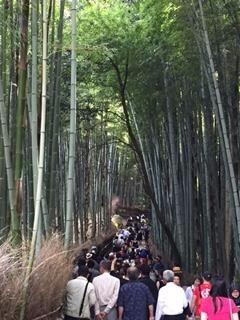 京都13_edited