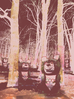 Мишки в лесу