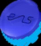 ENS-Disc.png
