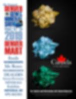 2019 DGMS Mini Poster 1.jpg