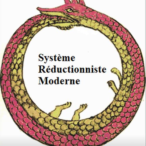 Système de santé réductionniste