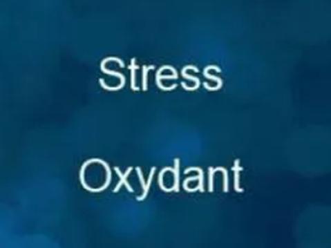 Vitamines et antioxydants autour d'un exercice physique