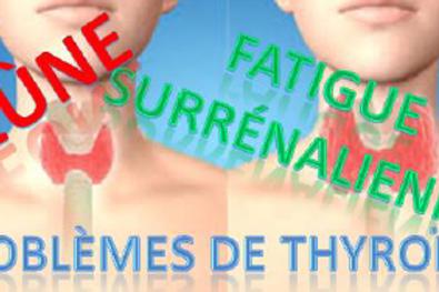 Jeûne, surrénales et thyroïde