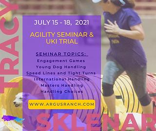 Tracy Sklenar Seminar 2021.png
