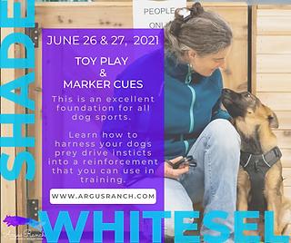 Shade Whitesel 2021 Seminar-png.png