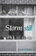 Harbinger Poetry Series : Storm Still