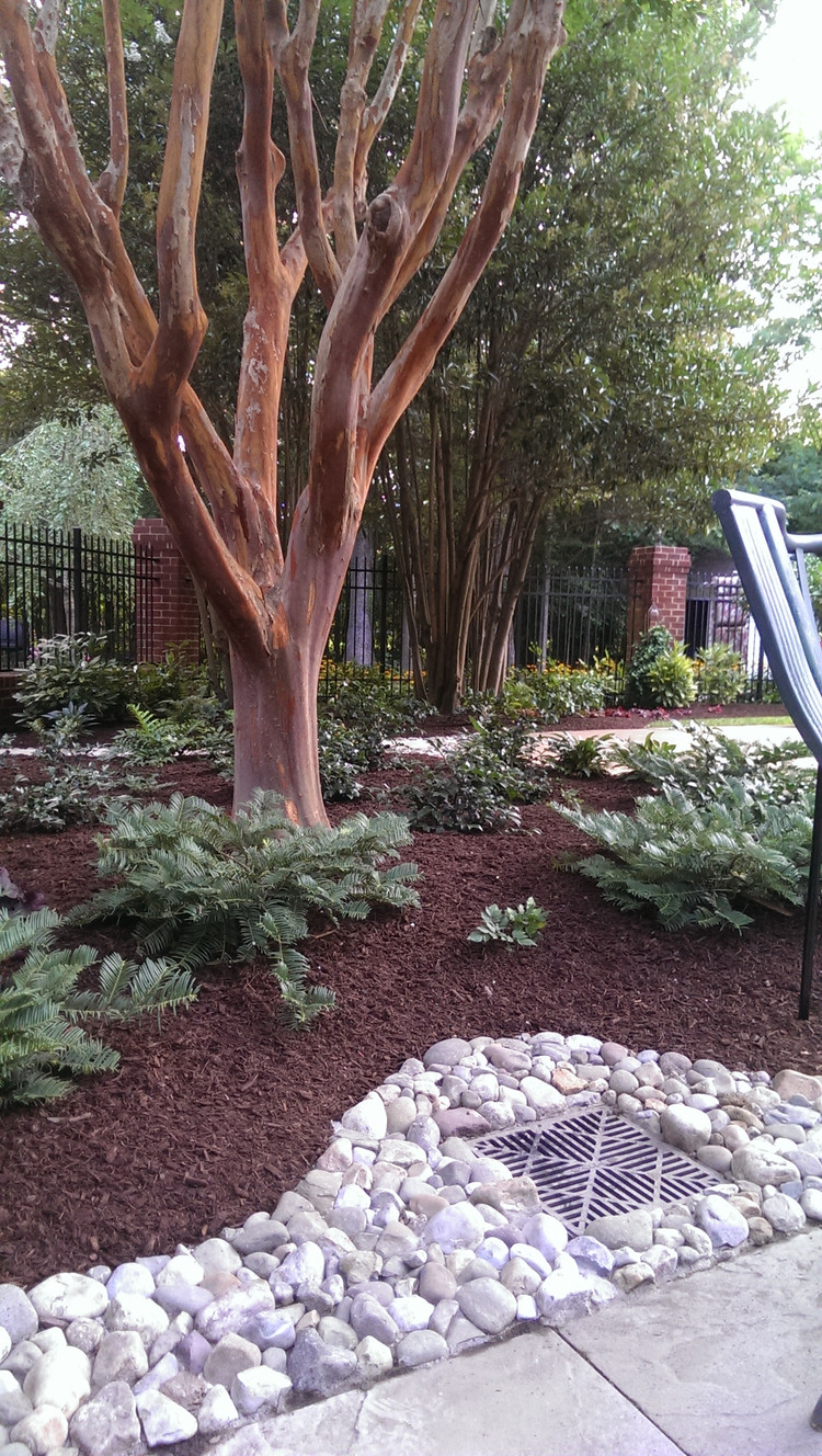 landmasters landscaping services