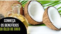 Conheça os benefícios do óleo de coco