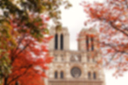 Notre Dame | Paris, France | French For You | Small Group Tuition | Manly, NSW | Learn French