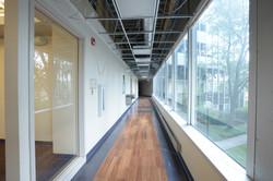 Office Redevelopment