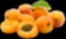 Importateur en France de fruits à noyau, abricots, pêches, nectarines, prunes